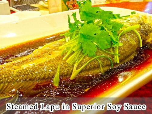 Steamed Lapu in Superior Soy Sauce
